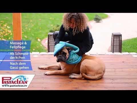 Hundehandtuch von PASTACLEAN - Schlammige Hundepfoten und schmutziges Fell werden trocken und sauber