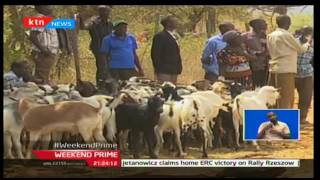 Baringo farmers complain of not being involved in auctioning prices in selling goats in Kimalel