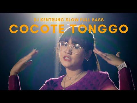 {Cocote Tonggo} Best Songs