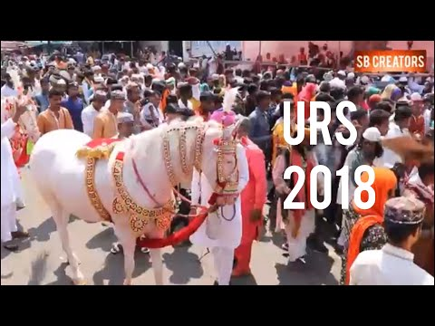 Live Baba Tajuddin Darbar 2018 नागपुर - смотреть