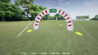 FPV Drone Simulation PE and Lift-Off