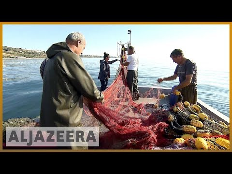 🇹🇷Illegal overfishing affects catch in Turkish waters l Al Jazeera English