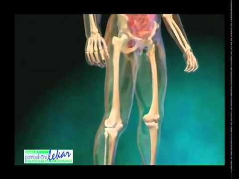 Što analizira predati u istraživanju o hipertenziji