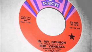 In My Opinion-The Vandals-1969