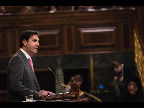 Intervención de Juan Luis Pedreño en el Congreso de los Diputados