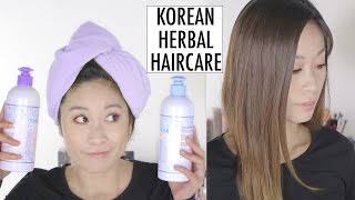 Korean Haircare | Should You Buy Atomy Products? A First Impression | Viestelook