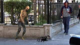 Смотреть онлайн Пранк: Большой паук атакует