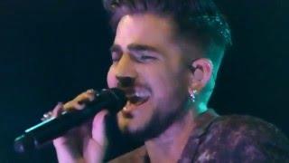 Adam Lambert - After Hours, Mad World - Sydney 1, 30 Jan 2016