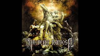 Anorexia Nervosa - The Shining