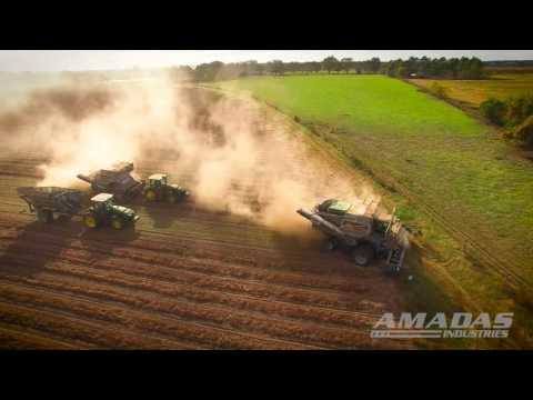 Amadas SP and PT Peanut Combines