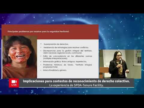 Video presentación: Enfoques para el abordaje de situaciones de conflicto en procesos de formalización de derecho colectivo, por Silvana Baldovino y el equipo de la Tenure Facility de la Sociedad Peruana de Derecho Ambiental (SPDA)