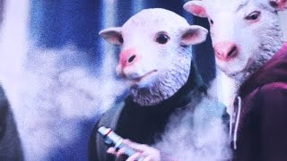 Pasadena Vapers React to Being Called 'Stupid Sheep'