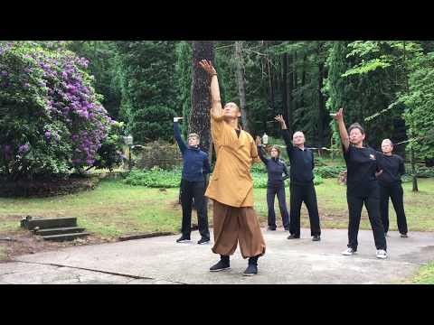 易筋經 · Yi Jin Jing (Muscle Tendon Change Classic) Qi Gong