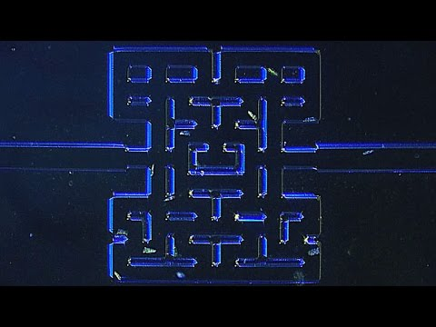 Watch This Video Of Microorganisms In A Pac-Man Maze