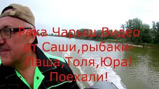 Рыбалка в алтайском крае на сазана