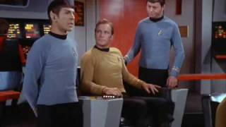 Mother Horta liked Spock's ears