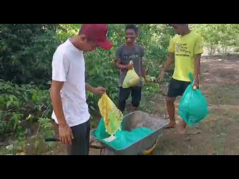 Transforming 1000 Lives through Waste