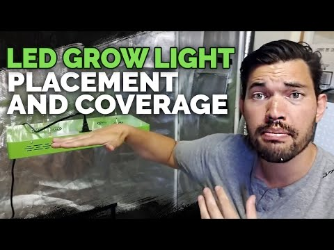 LED Grow Light Placement and Coverage (Mars Hydro Review)