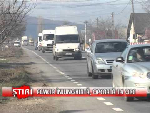 Femei singure din Sighișoara care cauta barbati din Craiova