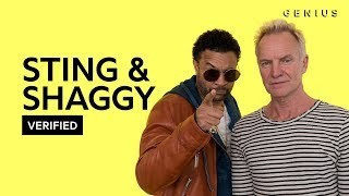 Gambar cover Sting & Shaggy