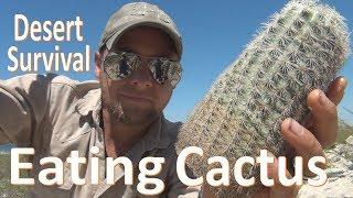 Cactus Eating -Desert Survival- Food & Water