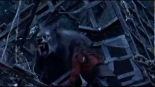 Van Helsing (evanescence) music video