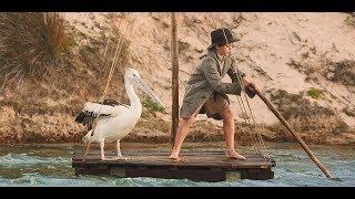 男孩救了一窝小鹈鹕,而鹈鹕长大后,却在大海中救起男孩的父亲