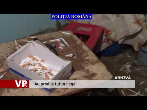 Au produs tutun ilegal
