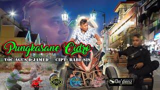Download lagu Pungkasane Cidro Agus D Jamed Mp3