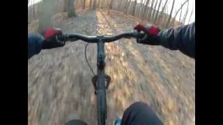 29er rigid single speed downhill mtn. biking with vizsla