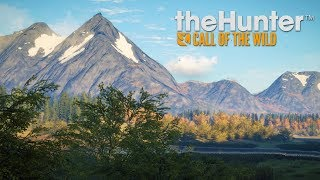 Hunting Bears with Buggs | Thehunter: Call of the Wild Live!