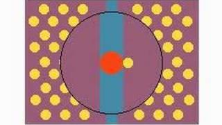 Cell Equilibrium
