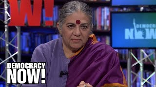 Vandana Shiva: We Must Fight Back Against the 1 Percent to Stop the Sixth Mass Extinction