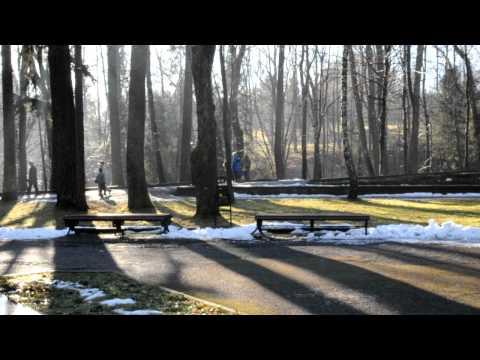 Gesund leben mit Elena Malysheva Arthrose des Kniegelenks