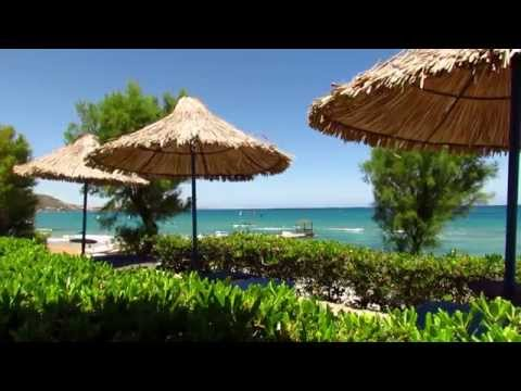 Crete 2014 - Alexander Beach Hotel ~ Malia
