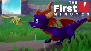 Spyro Reignited Trilogy: The First 22 Minutes of Spyro 2: Ripto