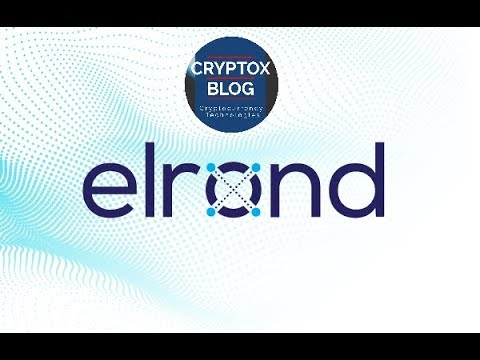 What is the purpose of the project is Elrond Network?
