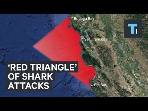 The 'Red Triangle' off the California coast is known for great white shark attacks