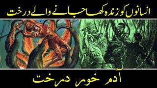 Man Eating Trees - Adam Khor Darakht - Mysteries Of Trees - Purisrar Dunya Urdu Documentaries