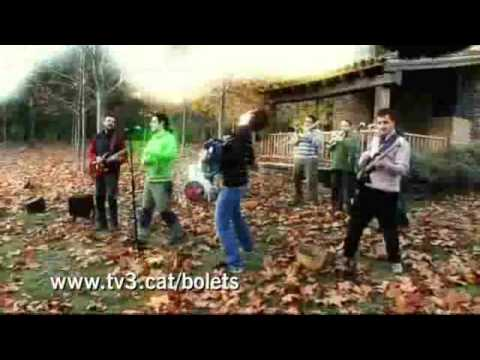 """TV3 - Caçadors de bolets - Els Dekrèpits: """"Boletaires 09"""""""