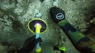 Scuba Diving the Devil's Den for Lost Valuables! (Found 2 Prehistoric Bones) | DALLMYD - Video Youtube