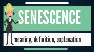 What is SENESCENCE? What does SENESCENCE mean? SENESCENCE meaning, definition & explanation