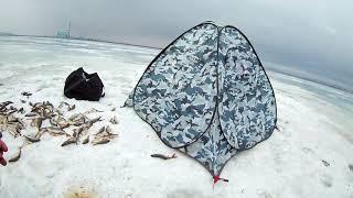 Рыбалка в шарыпово на трубе 2019
