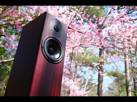 Totem Acoustic Hawk Review!