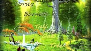 Dorsey Burnette - Tall Oak Tree