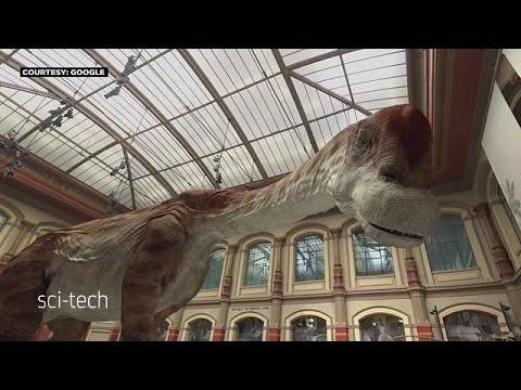 Βερολίνο: Οι δεινόσαυροι ζωντάνεψαν στο Μουσείο Φυσικής Ιστορίας