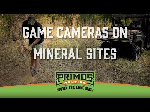 Using Game Cameras on Mineral Sites video thumbnail