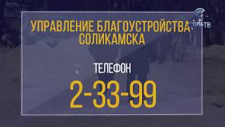Чистка снега:борьба с ветряными мельницами?_17.01.2019_СольТВ
