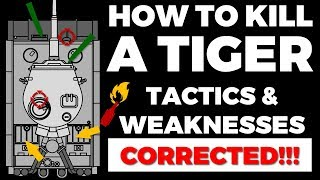 How to fight Tigers - Tactics & Weaknesses