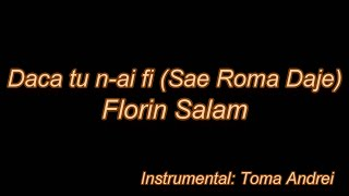 Florin Salam - Daca Tu N-ai Fi (karaoke) | Toma Andrei